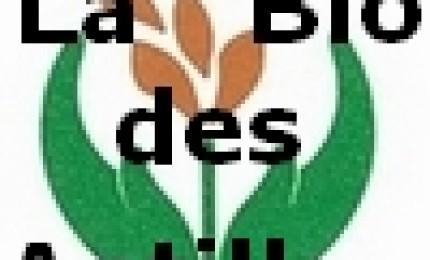 Diet Discount & Bio Caraibes