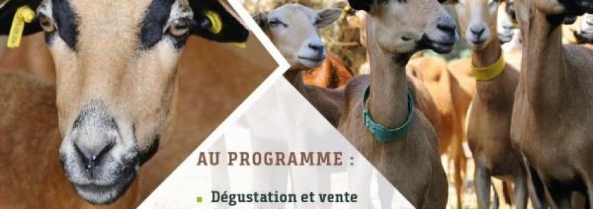 Valorisation de la viande d'agneau marqué, Valeurs Parc Naturel Regional de Martinique