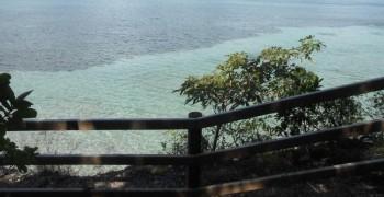 Randonnée à Grande Anse des Salines <==> Bourg de Ste-Anne (Ste-Anne)