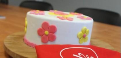 Stage de cake design niveau 1 ( 3/4)