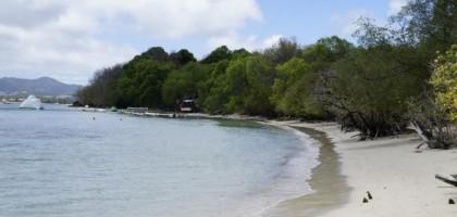 Randonnée Anse Caritan -Salines