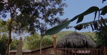 Cabane Rêve d'Enfant: perchée dans les arbres avec terrasse et jacuzzi privé