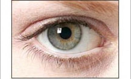 Bilan iridologique de terrain