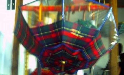 Tournicoti : la fabrique martiniquaise de parapluies