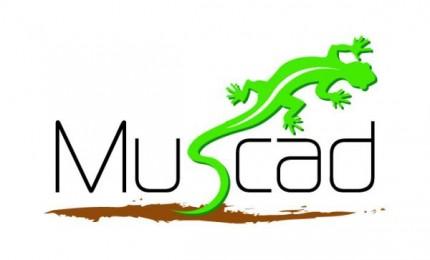 Muscad