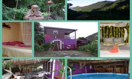 La Villa Harmonie avec piscine et terrasses en bois