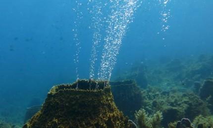 Corail Club Caraibes