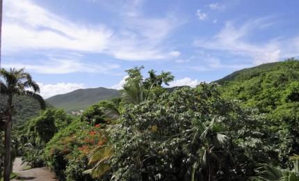 Appartement Oxygéne F2 avec chambre climatisée et terrasse avec vue sur la nature