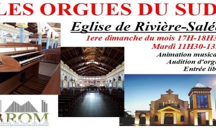 Les Orgues du Sud / Martinique